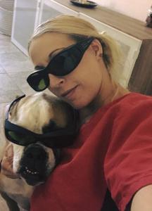 zen den animal wellness and rehab (14)